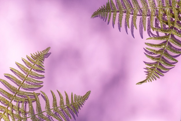 Abstract texture with gold fern leafs, palm on sunlight