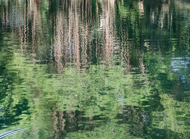 Абстрактное отражение деревьев на рифленая поверхность воды