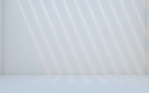 Abstract white room. blank room with wall. 3d rendering