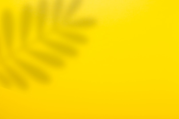 抽象的な黄色の背景と熱帯植物の葉の影。