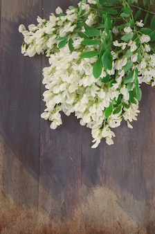 Acacia flowers on a dark wooden background