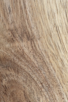 Текстура древесины акации крупным планом