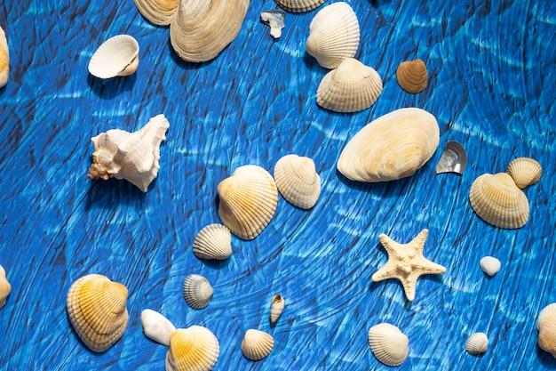 파란색 wawes 배경에 여름 바다 해변을 위한 액세서리. 해변 물건 선글라스와 조개