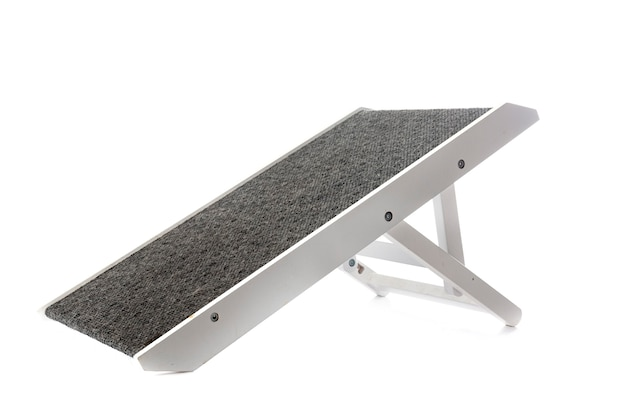 Access ramp for dog in front of white background