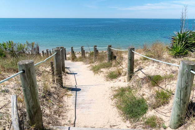 Access sandy beach of isle noirmoutier by sand pathway