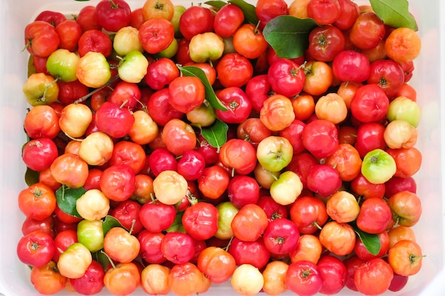 Acerola cherry of thailand in white box.