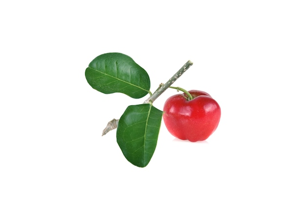 Acerola small cherry fruit with leaf isolated on white background.