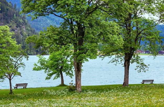 해안 (오스트리아)에 꽃이 만발한 초원과 벤치와 achensee (achen 호수) 여름 풍경