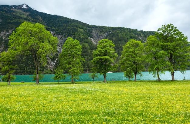 Летний пейзаж ахензее (ахенского озера) с цветущим желтым лугом и облачным небом (австрия).