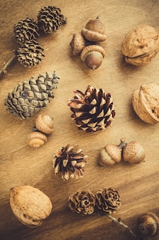 Acorn, walnut and cone on wooden table.