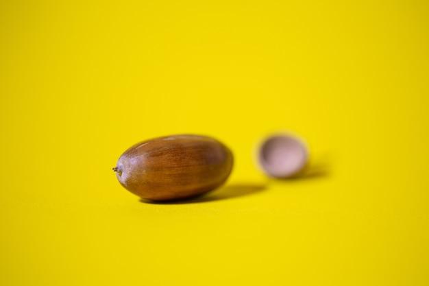 Желуди крупным планом, изолированные на желтом фоне