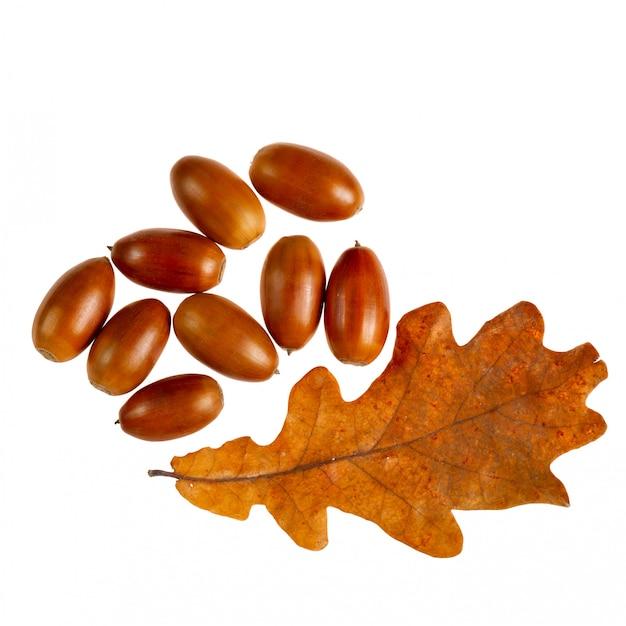 Желуди с дубовыми листьями