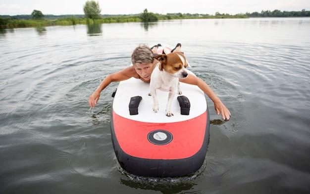 水中のパドルボードにチワワ犬と水着でアクティブな魅力的な白人の年配の女性。サーフィン。