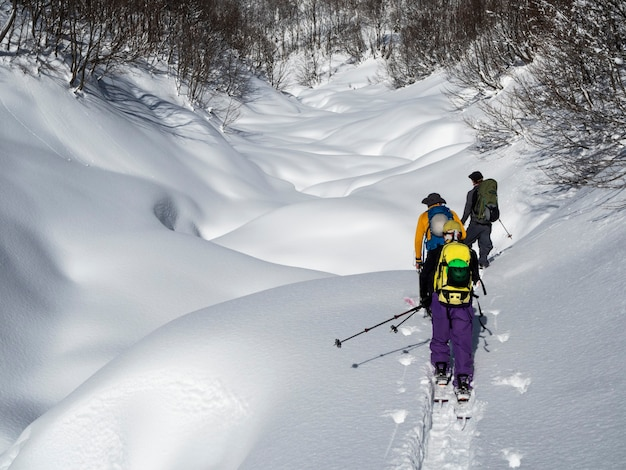 눈 위에서 스키 나 스플릿 보드를 타는 활동적인 남자. 스키 투어링 스포츠 활동