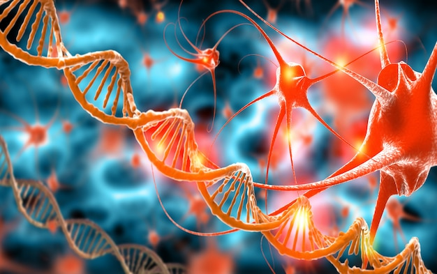 Active nerve cells and dna