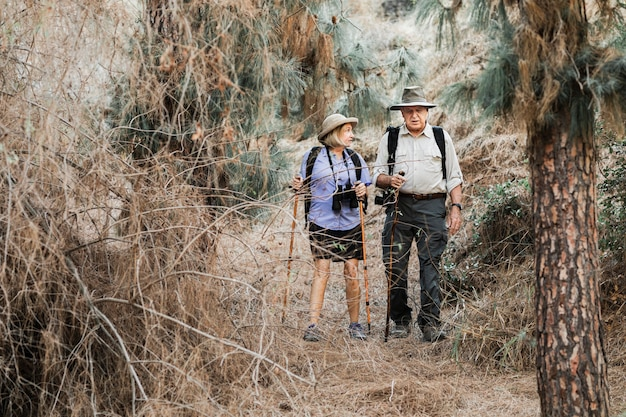 Active old couple on a date in the forest