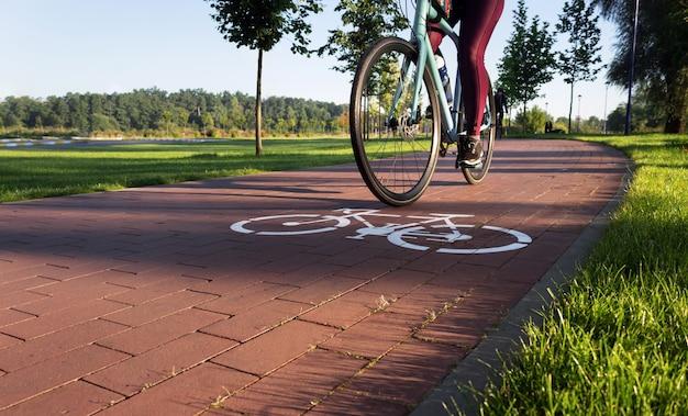 활성 어린 소녀는 이른 아침에 도시 공원에서 자전거 경로에 탄다. 레저 개념.