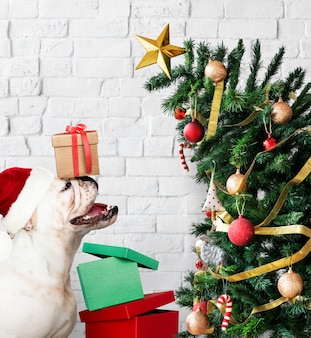 Adorable bulldog puppy standing next to a christmas tree