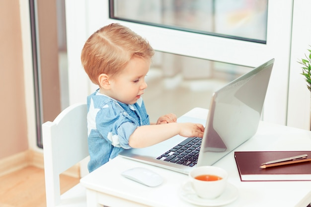 Adorable business baby boy 2 years old working at the office toddler with gadgets