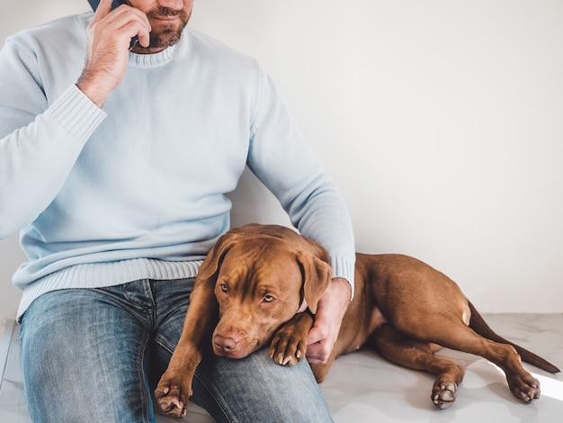사랑스럽고 매력적인 강아지와 그의 돌보는 주인.