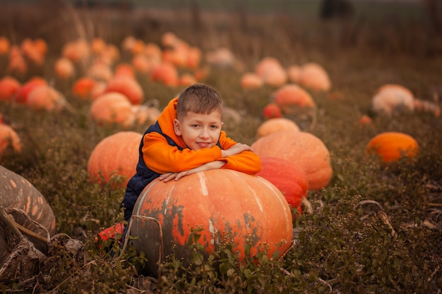 Adorable child having fun with pumpkin on pumpkinpatch on farm.