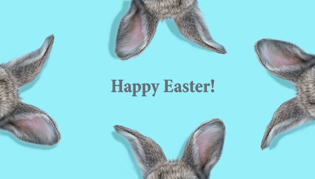 Прелестный пасхальный кролик, изолированные на синем фоне студии, флаер для вашей рекламы. симпатичные уши скрытого животного. открытка с copyspace. концепция праздников, весны, празднования. современный дизайн.