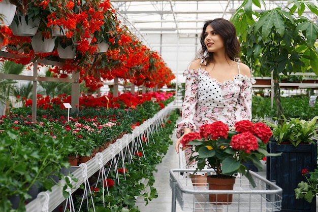 Adorable lady choosing flowers at greenhouse