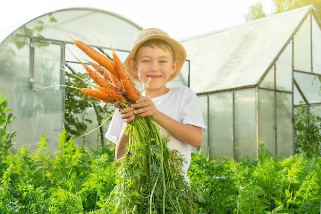 국내 정원에 당근이 있는 밀짚 모자를 쓴 사랑스러운 어린 소년. 아이 원예 및 수확. 아이들을 위한 건강한 유기농 야채의 개념. 어린이 채식주의