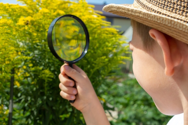 Adorable little child boy in straw hat look at green plant leaves and flowers with magnifying glass. kid observing, exploring nature and environment. early development and skills. young naturalist.