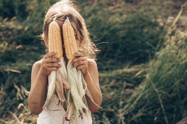 美しい秋の日にトウモロコシ畑で遊ぶ愛らしい少女。トウモロコシの穂軸を保持しているかわいい子。子供との収穫。子供のための秋の活動。