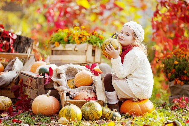 가 공원에서 호박에 앉아 사랑스러운 작은 소녀. 호박을 가지고 노는 예쁜 소녀. 어린이를 위한 가을 활동. 가족을 위한 할로윈과 추수 감사절 시간.