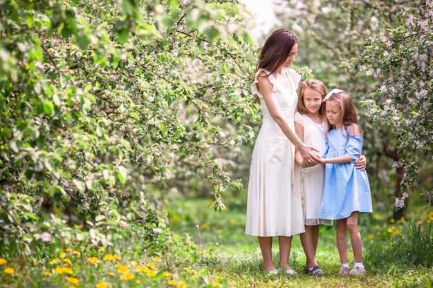 Adorable little girls with young mother in blooming cherry garden on beautiful spring day