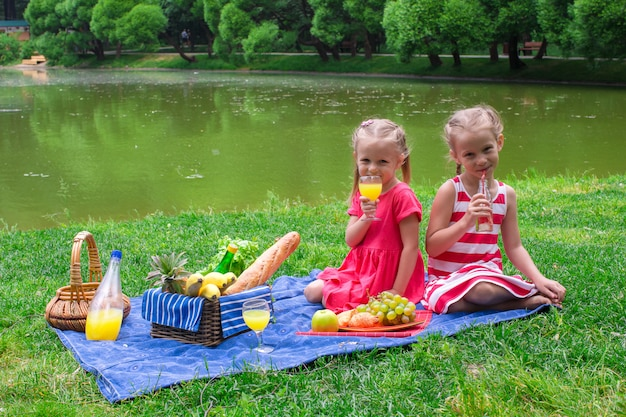 Adorable little kids picnicing in the park at sunny day