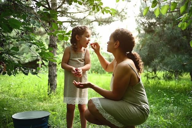 愛らしい母親が娘に庭で撥弦楽器を食べさせます。夏にさくらんぼを摘むとき、ママと娘は同じ服を着ます。母性、子供時代、家族関係。