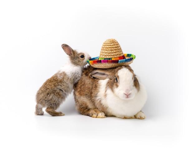 Очаровательная мама-кролик с соломенной шляпой и кроликом