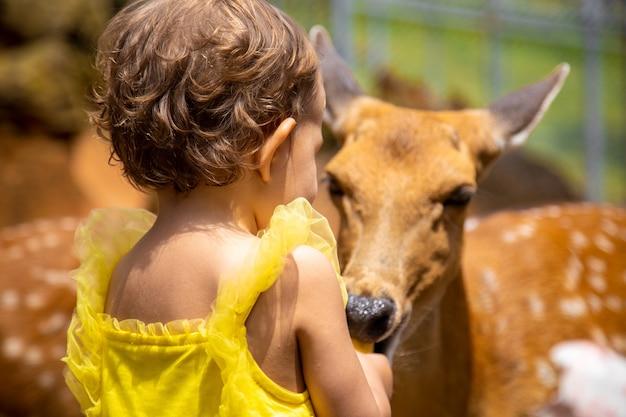 愛らしい幼児が農場で鹿に餌をやる。動物園で動物をかわいがる美しい赤ちゃん。家族の週末に興奮して幸せな女の子。
