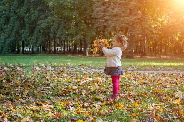 晴れた日に秋の公園で黄色のカエデの葉で遊ぶ愛らしい幼児の女の子