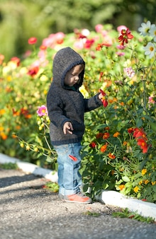 Adorable young boy checking flowers
