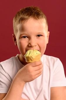 Adorable young boy eating delicious ice cream