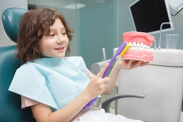 大きな歯ブラシを使用して顎モデルで歯を磨くことを学ぶ愛らしい少年