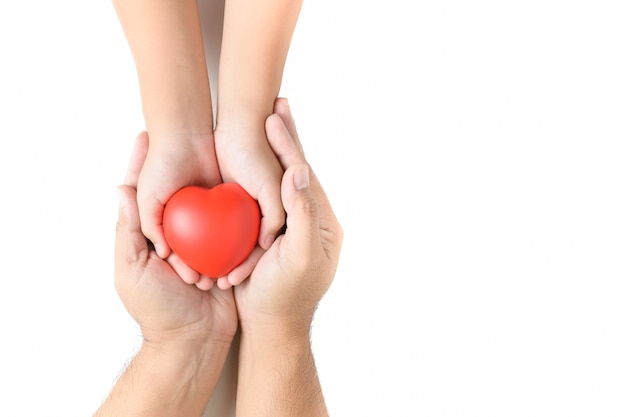 Adult and child hands holding red heart isolated