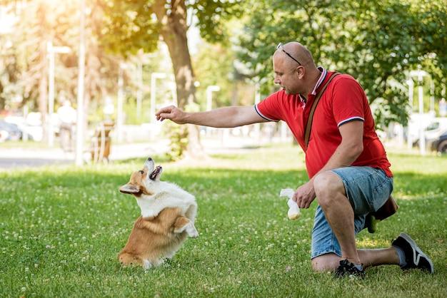 大人の男性が都市公園で彼女のウェルシュコーギーペンブローク犬を訓練しています