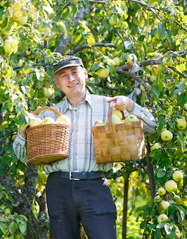 庭でリンゴの作物を立っている大人の男性