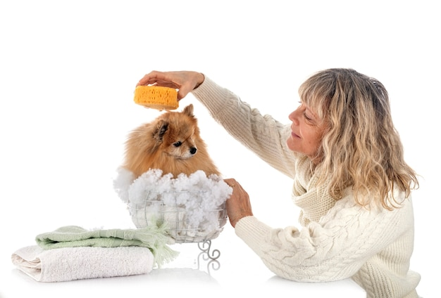 Adult pomeranian and woman