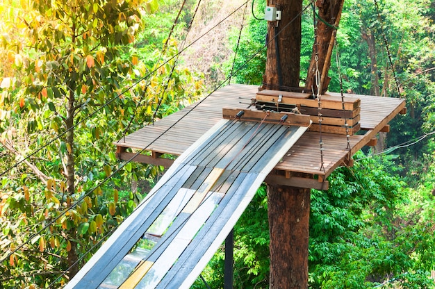 Adventure park bridges, ropes and stairs designed for beginners in woods among tall trees. adventure climbing on high wired park. course of high ropes in forest. zipline activity extreme sport