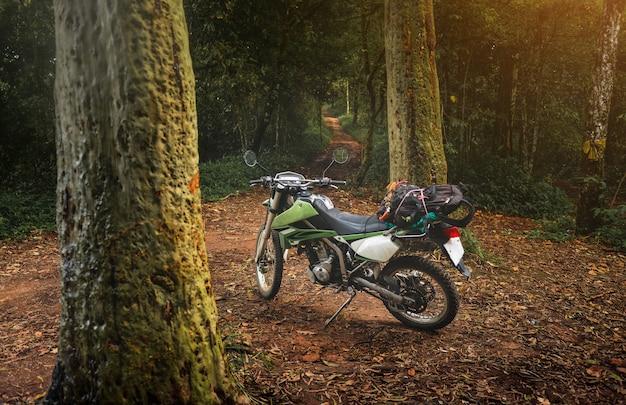 산 숲에서 엔듀로 오토바이를 여행하는 모험