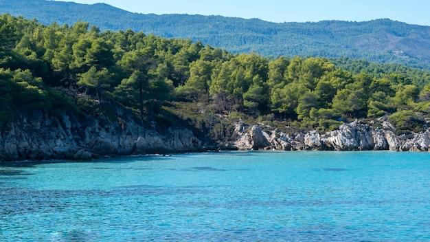 Costa del mar egeo con vegetazione intorno, rocce, cespugli e alberi, acqua blu, grecia