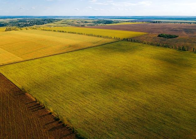 Красивый снимок с воздуха, сделанный с помощью дрона удивительных сельскохозяйственных полей летом.
