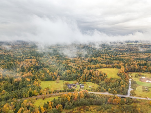 Aerial breathtaking shot of autumn forest covered by dense clouds