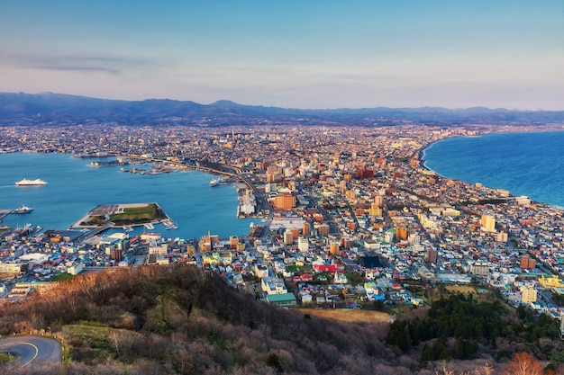 Aerial cityscape view from mount hakodate